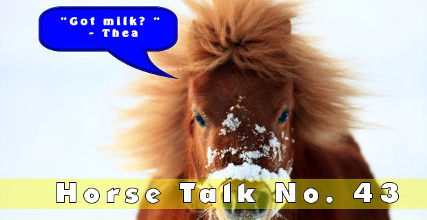 Horse Talk 43 Answer