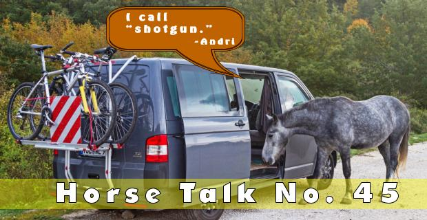 Horse Talk 45 Answer
