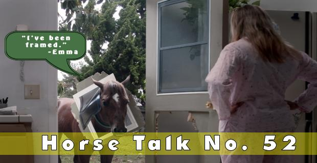 Horse Talk 52 Answer