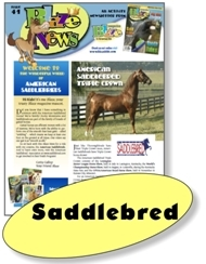 Saddlebred Blaze News