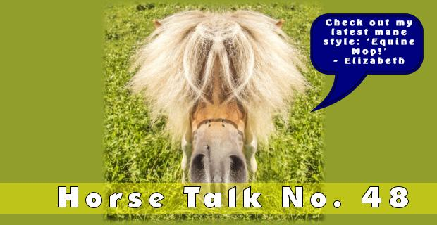 Horse Talk 48 Answer