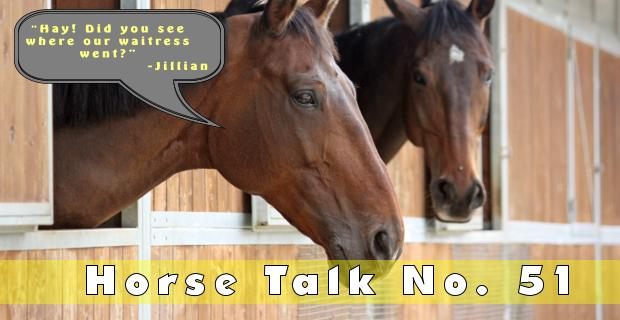 Horse Talk 51 Answer