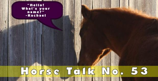 horse-talk-53-answer