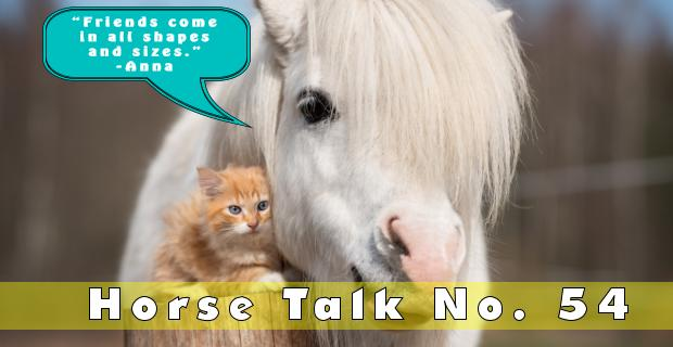 Horse Talk 54 Answer